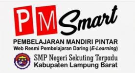 PMSmart
